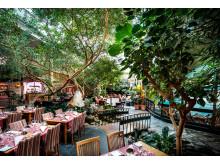 Restaurangdelen i Vinterträdgården