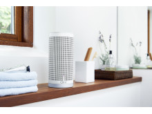 FREYA Wireless speaker with Bluetooth or with AirPlay/DLNA: