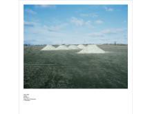(X)Sites, Willner - Olsson art 1 Heap # 26