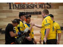 Svenska landslaget, sensationell fyra vid VM 2014