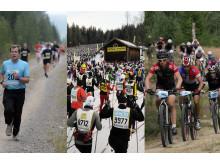 Vasaloppet störst i världen året runt
