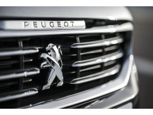 Peugeot 508 grill