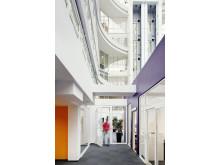 Sweco projekterar grönt kontor för Utbildningsförvaltningen i Malmö. Foto: Felix Gerlach.