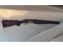 Recovered firearm [2]