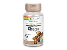 Solaray Fermenterad Chaga