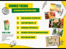 Sommertrends 2020