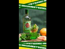 Ein entspannt sommerlicher Longdrink: Verde & Tonic