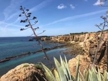 Algarves kust 3