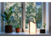 Trådlös högtalare och lampa, mini - fönster