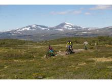 MTB cykling Ramundberget