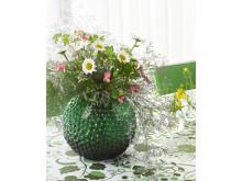 Miljöbild sommar, Daggvas grön och La plata grön