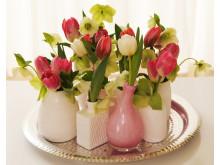 Tulpanarrangemang i vaser på bricka