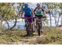 Cykla i Funäsfjällen