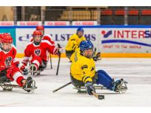 Kälkhockey-VM mars 2015