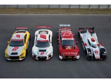 Audi TT cup, Audi R8 LMS, Audi RS 5 DTM, Audi R18 e-tron quattro