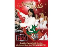 Exklusive julshow med Robert Wells - Jingle Wells till Djurönäset