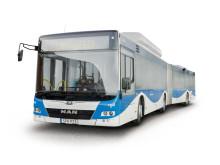 Buss med skugga