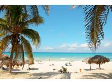 Varaderos strande byder på ægte caribisk stemning. Her, ca. 140 kilometer øst for Havana, har bl.a. europæiske hotelkæder bygget All Inclusive-resorts af høj standard.