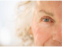 Bayer ansöker om godkännande av individanpassad