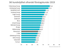 SKI elhandel företag 2019