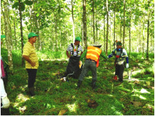 FSC Audit bei Life Forestry