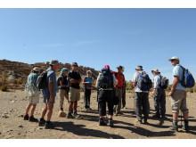Wandering in Morocco