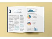 NetClean-rapporten 2017