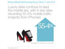 Nucleus Mobile Web Browsing Survey - June 2014 2