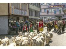 Einzug in Appenzell