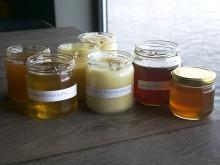 Sju sorters svensk honung på Fotografiska