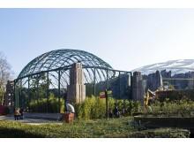 Freiflug-Voliere im Zoo Leipzig - neue Heimat der Gänsegeier