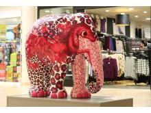 Elephant Parade to visit Cardiff
