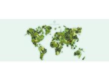 Jordens julkalender