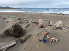 Strandsøppel