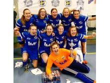 Årets studentmästare i futsal - LiU AIF Fotbollsklubb Lag 2
