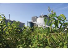 Billund BioRefinery hædret med EU's miljøpris 2014
