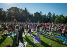 PureYoga Open Air i Botaniska trädgården, 21 augusti 2015