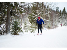 Tidig längdåkning i Hemavan Tärnaby