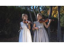 Violinister