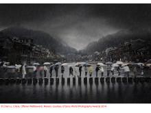 Copyright Chen Li, China, courtesy of SWPA 2014