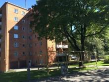 Lönn i Högsbo
