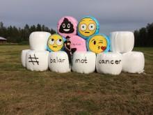 Elin Bäckström bidrag balarmotcancer 3