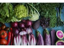 Grönsaker från Årstiderna