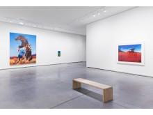 Richard Prince installations photos