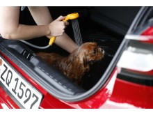 Hundespa i Ford Puma