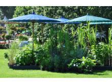 Den stora trädgårdsfesten  2016