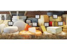 Medvetna konsumenter – därför bör livsmedelsbranschen satsa på effektiv märkning
