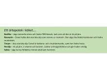 Örtapoteksruta, grön