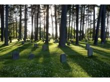 Världsarvet Skogskyrkogården