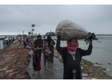 Rohingyer från Myanmar söker skydd i Bangladesh.